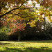 Autumn 2018 in south London | Crystal Palace-16