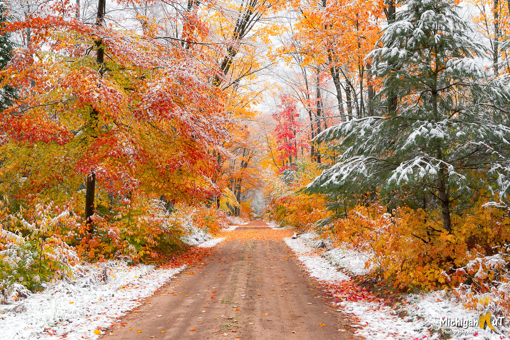 """Seasons Collide"" Hiawatha National Forest"
