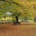 Stanton Park 28/10/18