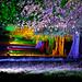 Tring Festival of Light