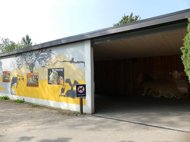 Eingang zur Löwenanlage