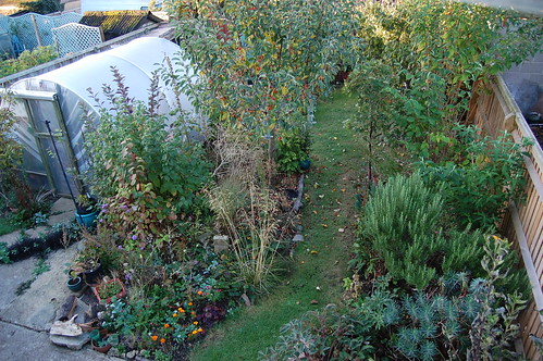 Looking Down on the Back Garden - September 2018