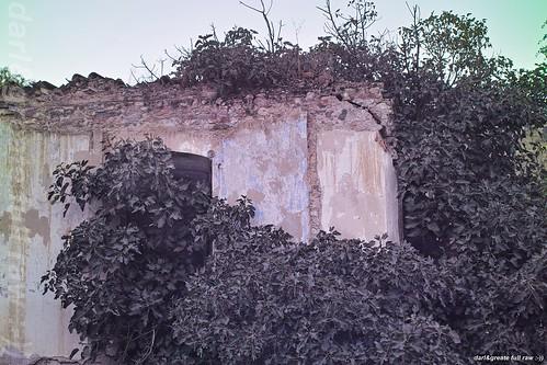 el molino derruido!! :-))
