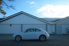 VW Beetle - Photo of Herrlisheim