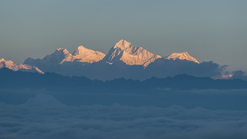 Lhotse, Mt Everest, Makalu, Chomo Lonzo, from Sandakphu at sunrise