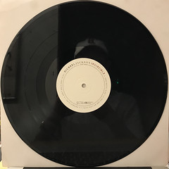 MICHAEL JACKSON:INVINCIBLE(RECORD SIDE-C)