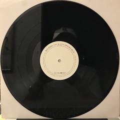 MICHAEL JACKSON:INVINCIBLE(RECORD SIDE-C)