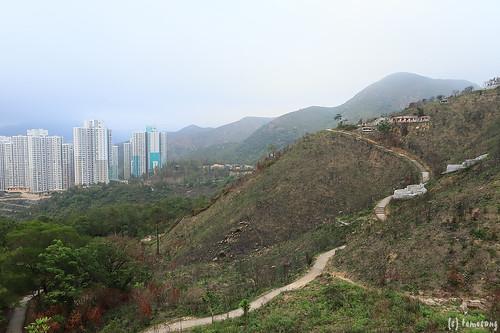 Fo Dau Ping, Sha Tin