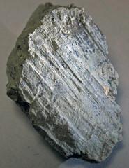 Slickenlined argillaceous limestone (Maxville Limestone, Mississippian; Pleasant Valley Limestone Quarry, Muskingum County, Ohio, USA) 4