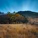Wimberry Rocks - Chew Valley