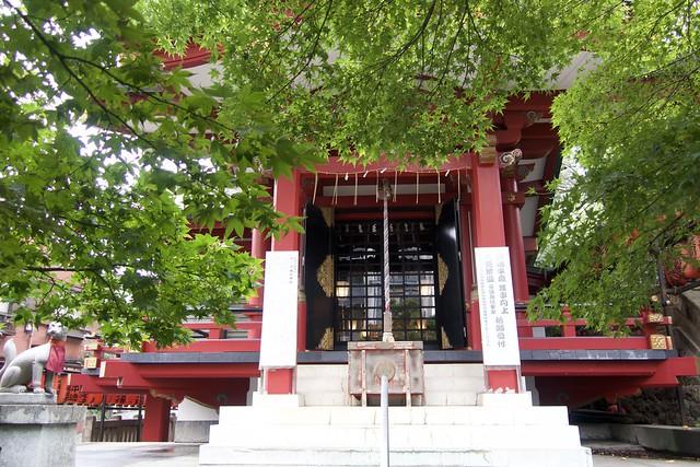 chanoki-inari 005