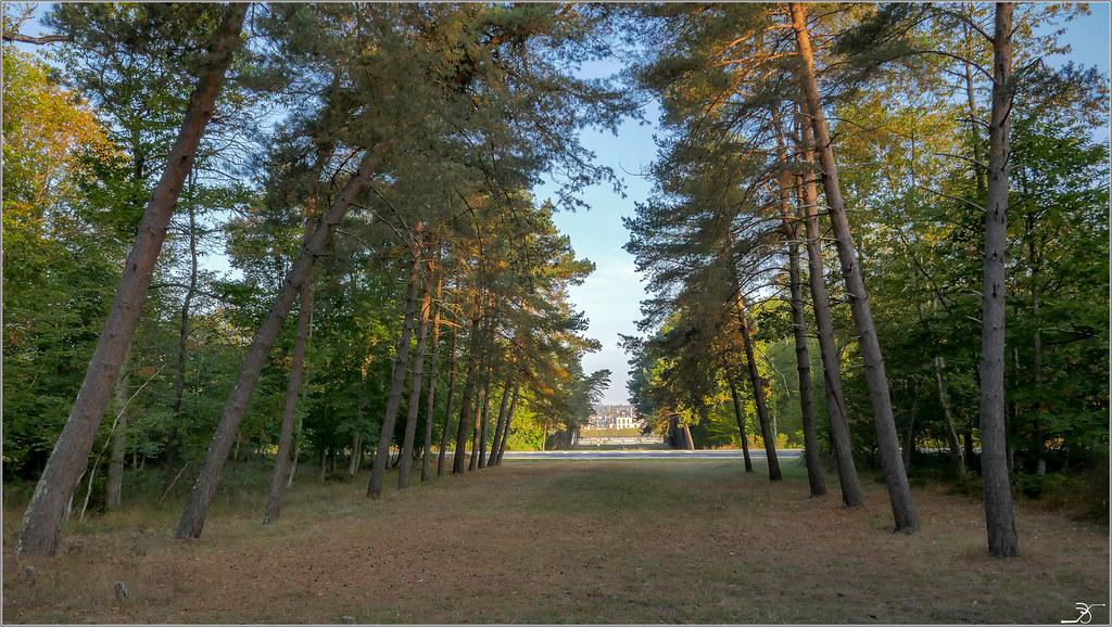 Fontainebleau Avon 44505947084_e63b3597eb_b