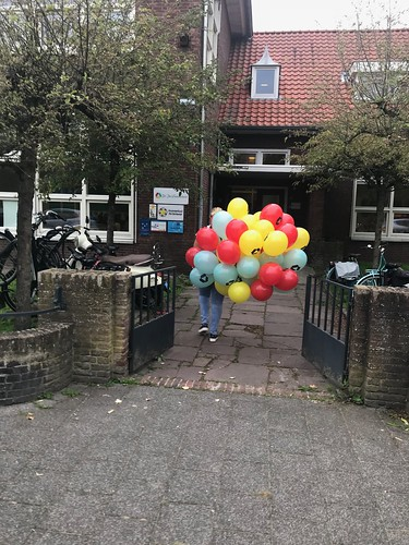 Heliumballonnen Bedrukt Dr de Visserschool Breda