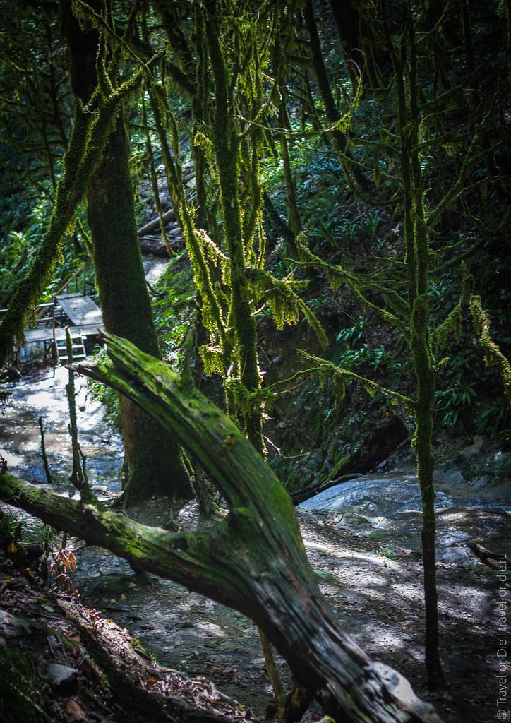 33-waterfalls-sochi-33-водопада-сочи-canon-0129