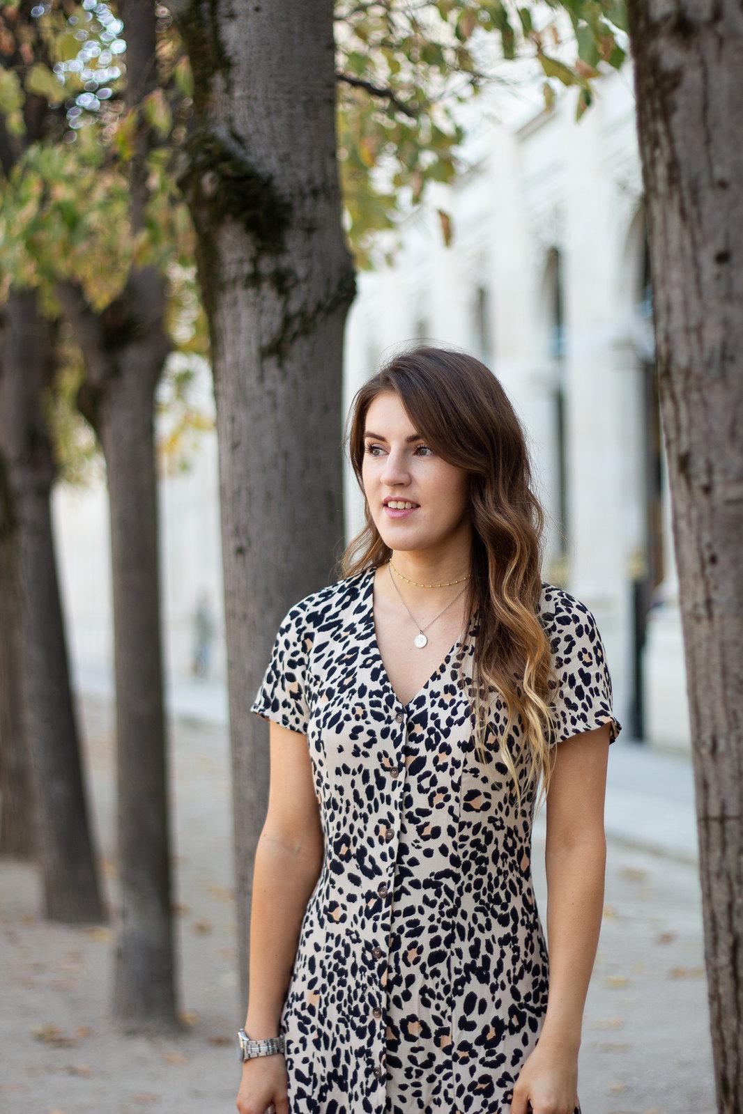 leopard print dress-8