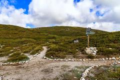 Le plateau du Cuscione en automne-002