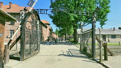 Pologne, les camps d'Auschwitz