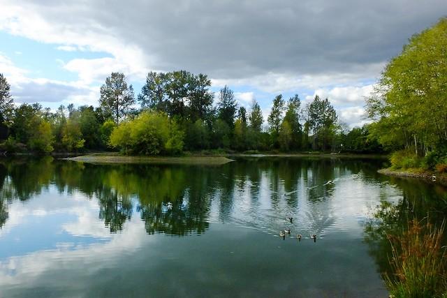 Toledo Pond