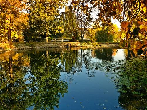 Herbstidylle - autumn idyll