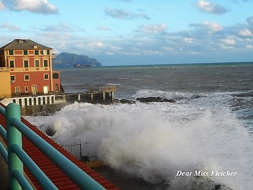Corso Italia (9)