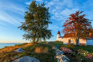 Burnt Island Lighthouse Flowerbed