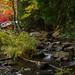 Oxtongue River-Ragged Falls