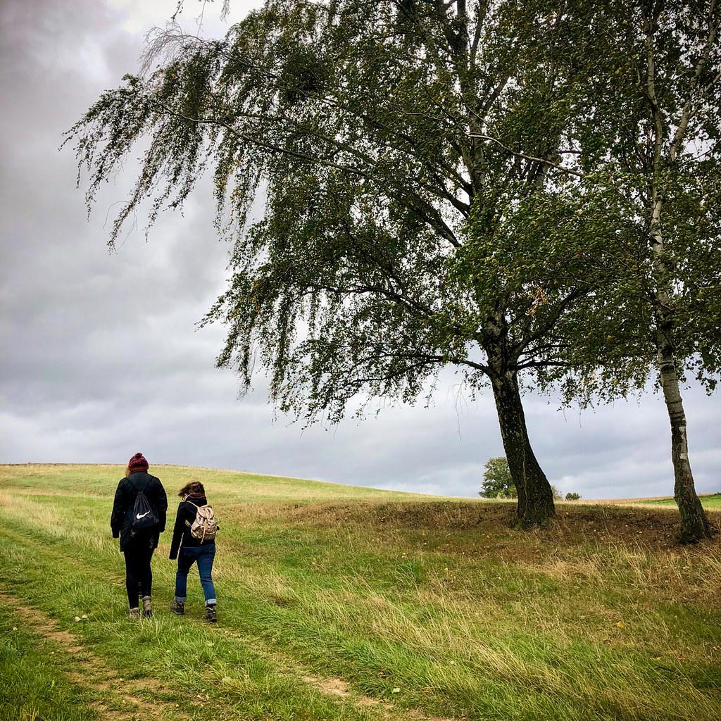 Wandern am Elbhang