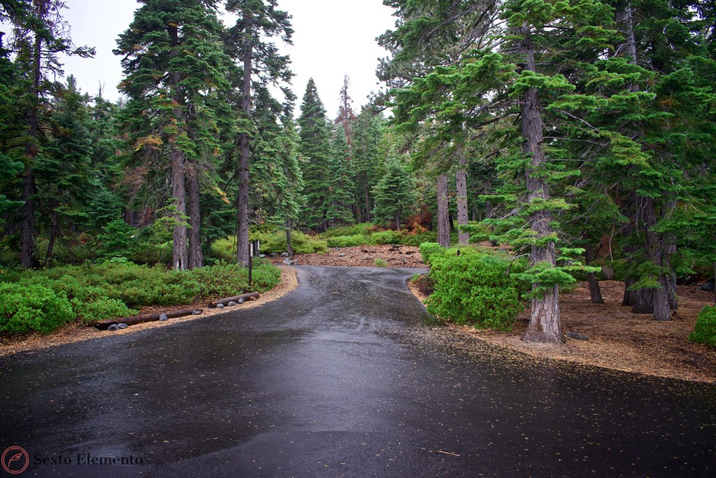 dl-bliss-state-park-roads