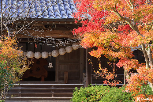 Autumn Color at Seiryuji Temple 2018