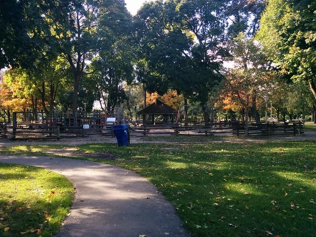 In Dufferin Grove Park (3) #toronto #dufferingrove #dufferingrovepark #parks #fall #autumn #latergram