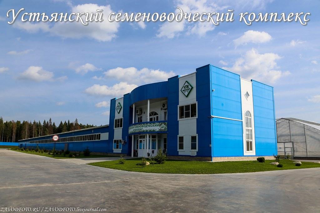 Устьянский семеноводческий комплекс