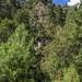 mountain path por ikarusmedia