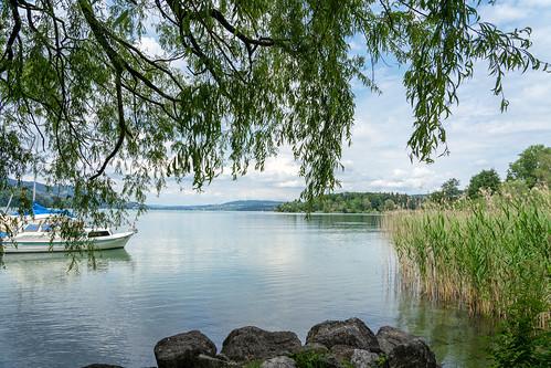 Lake Hallwil