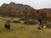 À Chamalières, l'automne, par grand vent