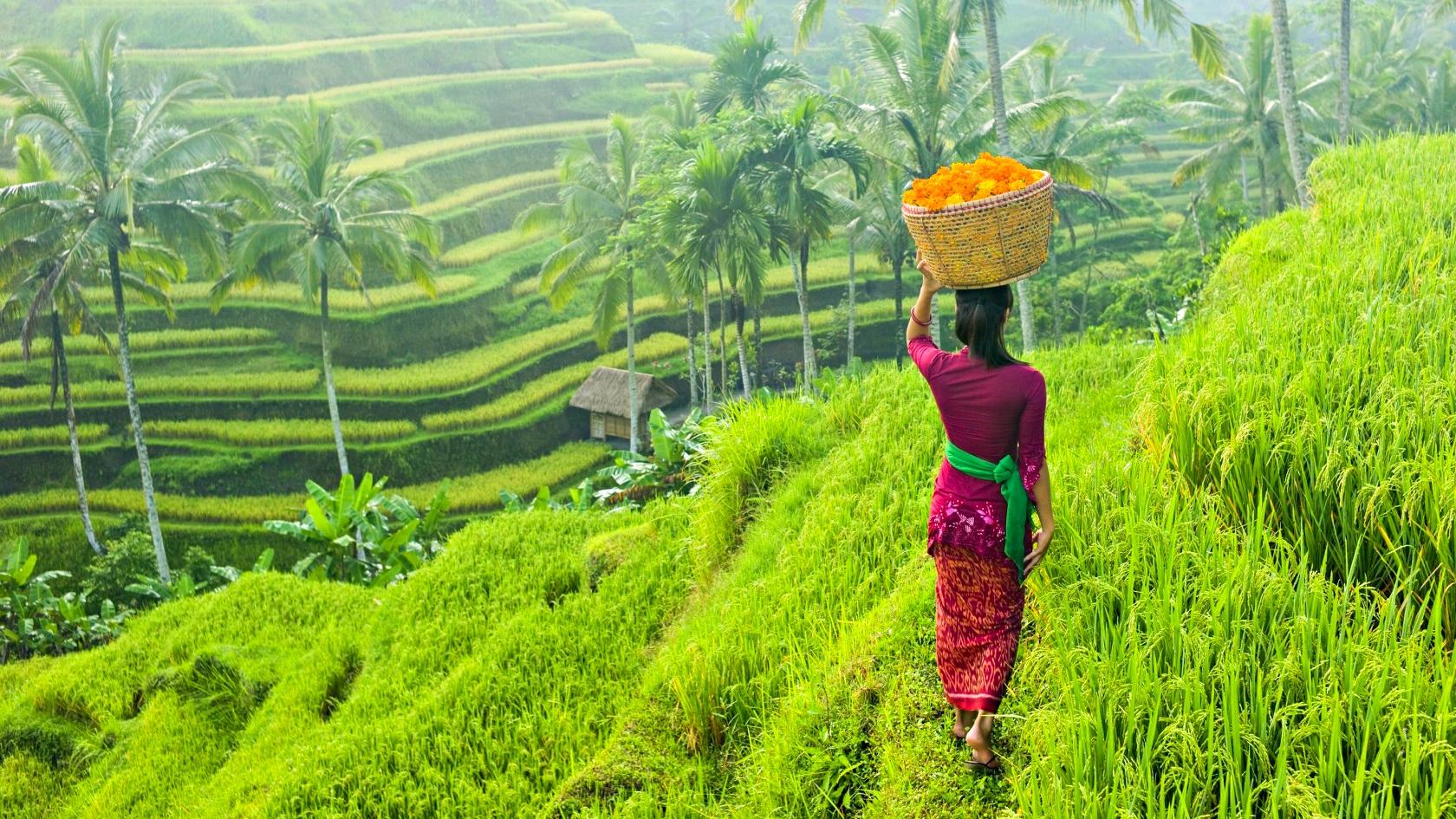 Desa Wisata Di Indonesia, Strategi Dan Perkembangannya