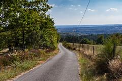 Sentier du Plan d'Eau de Stagnes - Photo of Montet-et-Bouxal