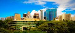 Skyline Downtown Honolulu, Hawaii - Image 844