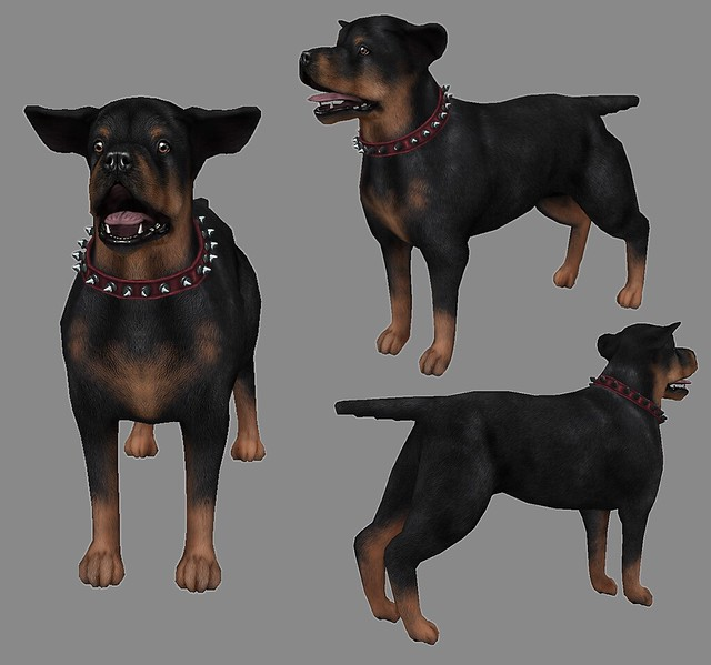 JIAN WIP :: The Epiphany - Rottweilers!