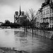 Notre dame - floods