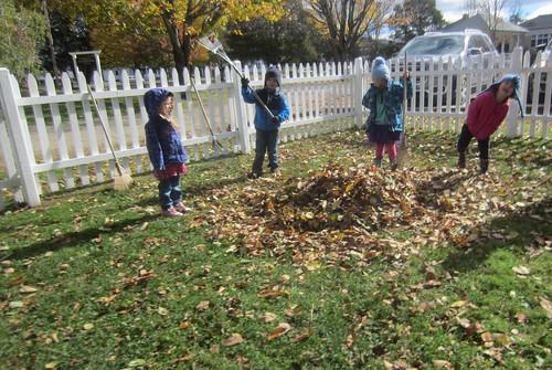 raking up the leaves