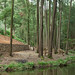 Albergaria-a-Velha: Parque dos Moinhos by Turismo do Centro