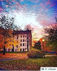 Ya está aquí el otoño... #Repost @mittoslo with @get_repost ・・・ Dreamy sky over Oslo :sparkles: #mittoslo // : @fay_nin