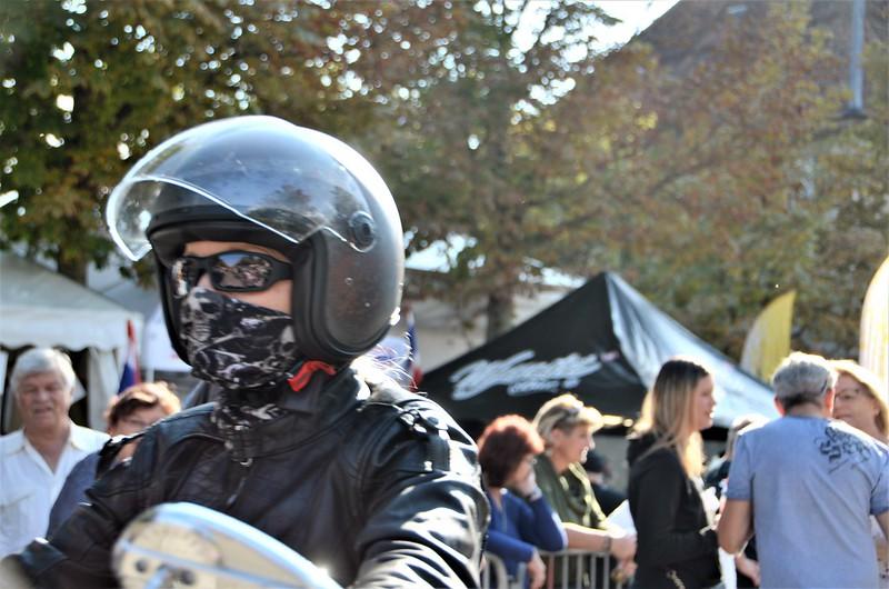 Harley Davidson HESO Tag 30.09 (13)