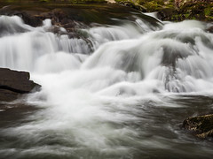 IMGPJ06443C_Fk - Great Smoky Mountain National Park