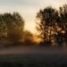 the hanging autumn mist...Boxmoor