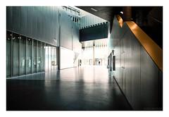 CentraleSupélec - bâtiment Bouygues : la grande diagonale