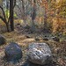 Autumn Oak Creek Canyon 3
