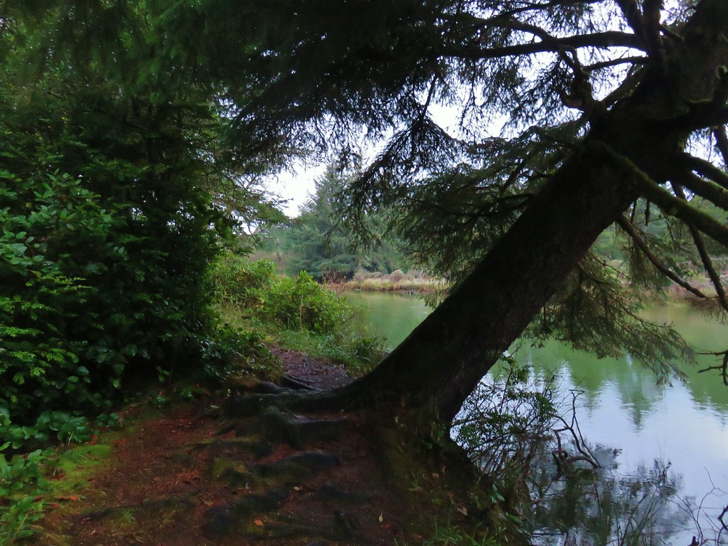 Siltcoos River
