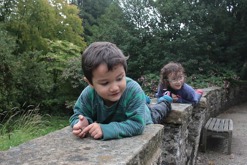 Sizergh Castle gardens