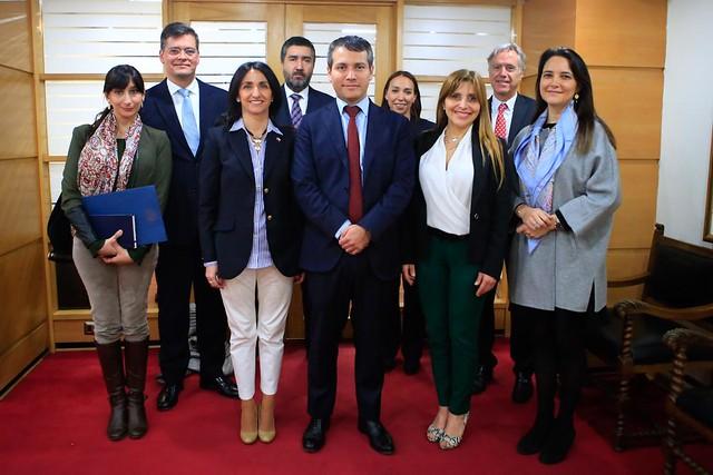 Se realiza primera reunión del Steering Committee APEC Chile 2019